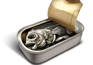 Canned Fish Bones